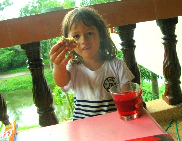 кокосовое печенье  для детей сыроедческое веганское (2) - копия