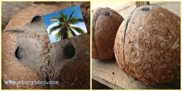 0домашнее органическое сырое кокосовое масло холодной экстракции методом ферментирования