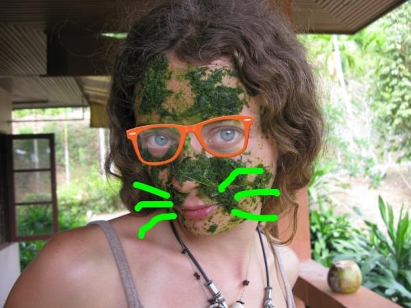 1 0как сделать детокс антиоксидантный зеленый коктеййль Centella asiatica บัวบก Tiliacora triandra  (Colebr.) Diels 1