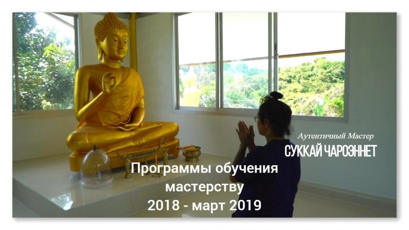 массаж ток-сен обучение у тайского мастера лечебный массаж лечение позвоночника