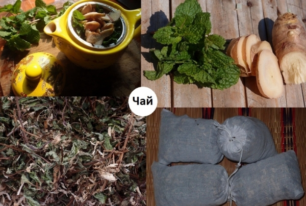 herbal tea mint-ginger collage photo - Copy