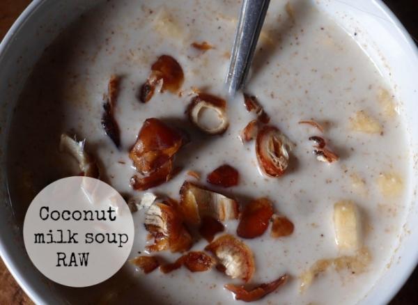 1мое сыроедение - суп из кокосового молока с финиками и проростками
