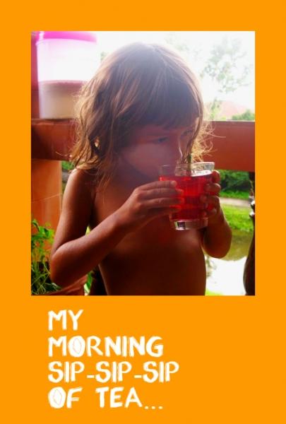 -чай для лечения обновления сердечнососудистой системы H. sabdariffa Var. sabdariffa сорта ruber  - Розелла