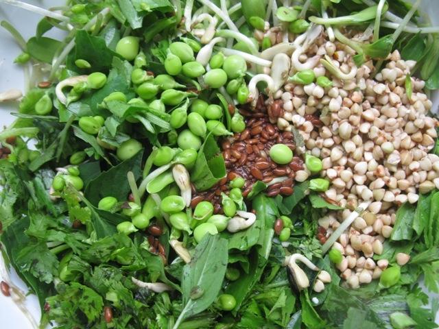 салат Прекрасный Зелёный