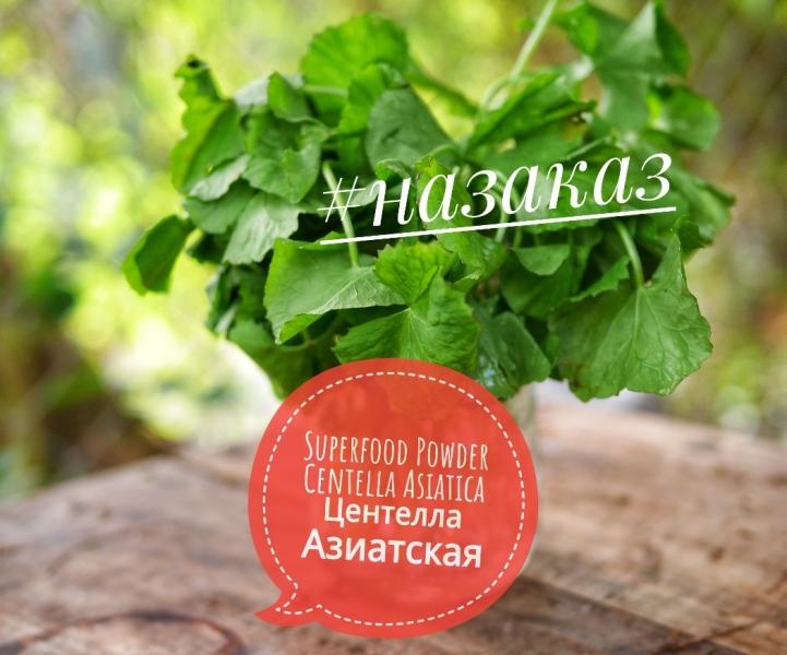 -CENTELLA asiatica superfood powder online order центелла азиатская суперфуд порошок онлайн заказ